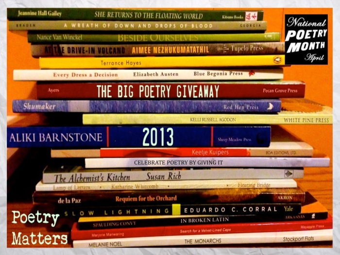 Big Poetry Giveaway 2013